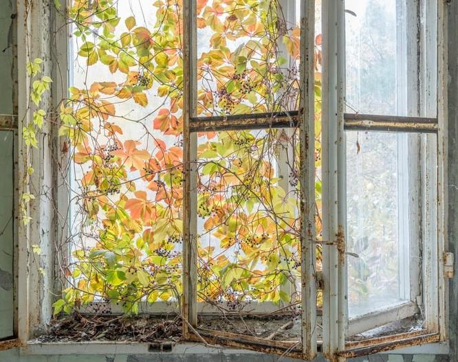 """Những bức ảnh chụp cảnh tượng bên trong """"Thành phố chết Chernobyl"""" ảnh 8"""