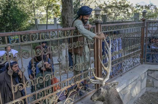 Chùm ảnh cuộc sống thường nhật ở thủ đô Kabul, Afghanistan ảnh 1