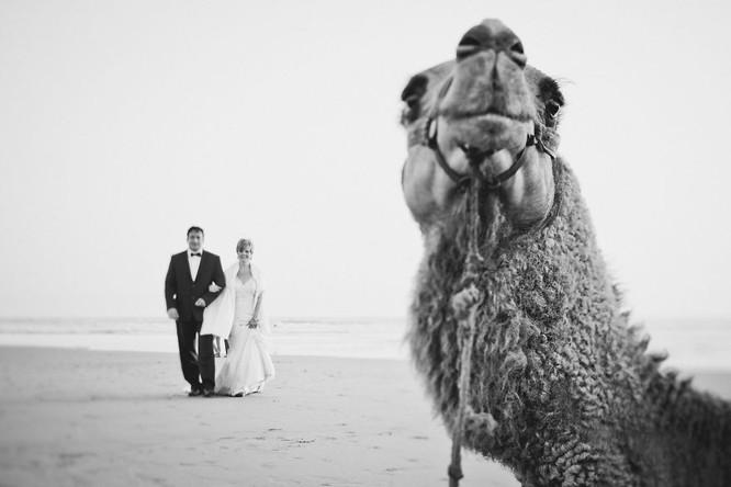 Khi cô dâu và chú rể bị 'cướp' vai chính trong ảnh cưới ảnh 15