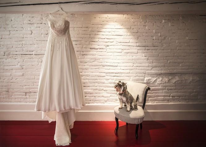 Khi cô dâu và chú rể bị 'cướp' vai chính trong ảnh cưới ảnh 20