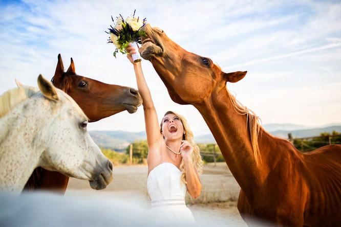 Khi cô dâu và chú rể bị 'cướp' vai chính trong ảnh cưới ảnh 2