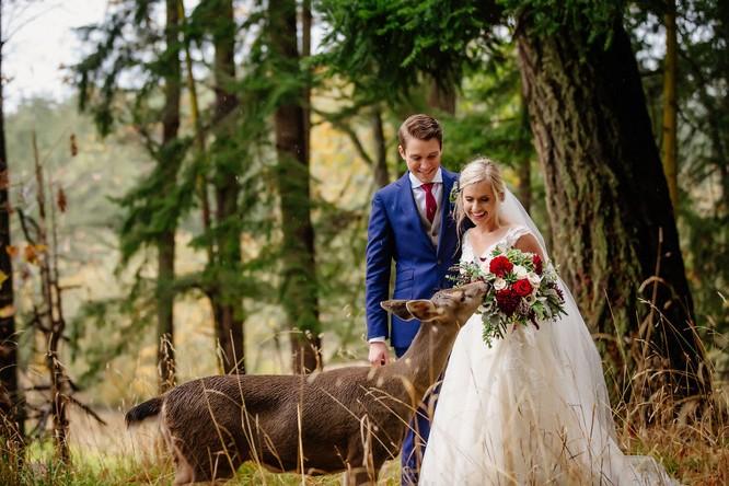 Khi cô dâu và chú rể bị 'cướp' vai chính trong ảnh cưới ảnh 8