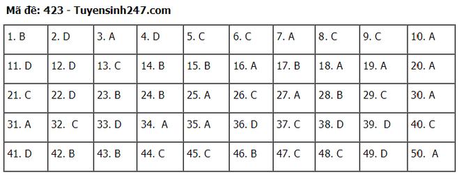 Tra cứu online đáp án đề thi tốt nghiệp THPT 2020 môn tiếng Anh mã đề 423 ảnh 2