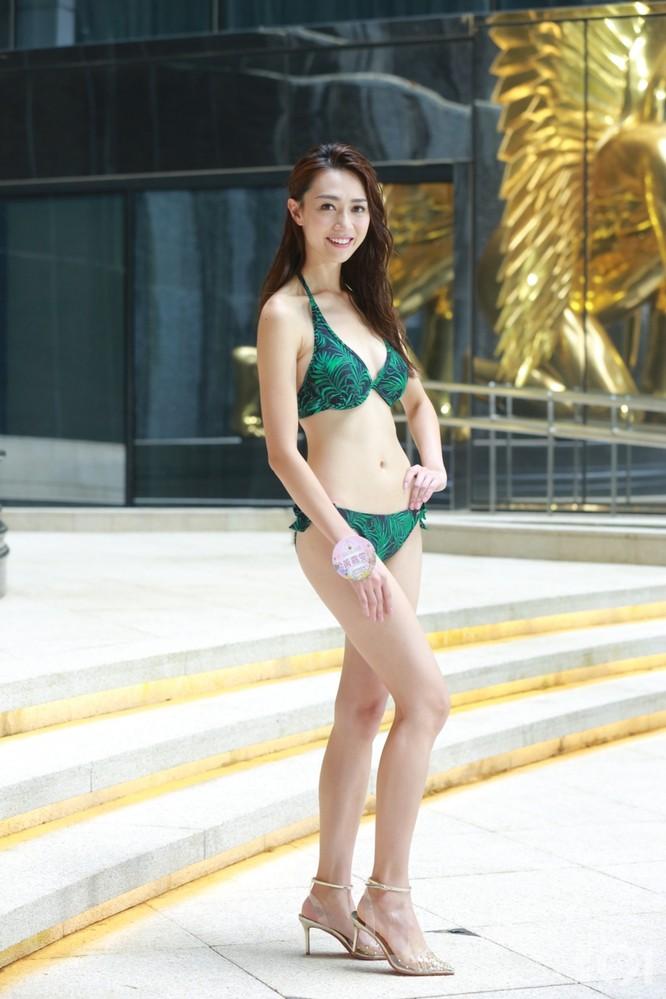 Đương kim Hoa hậu Hồng Kông thất nghiệp, đi cắt tỉa lông cho thú cưng ảnh 2