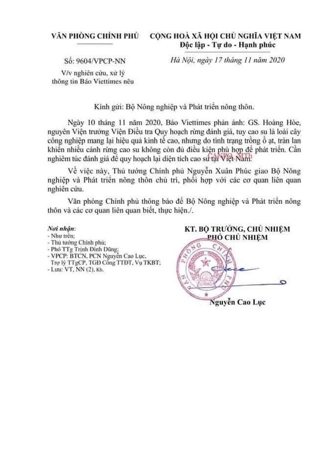 Thủ tướng ra chỉ đạo sau phản ánh của VietTimes về quy hoạch diện tích cây cao su ảnh 1