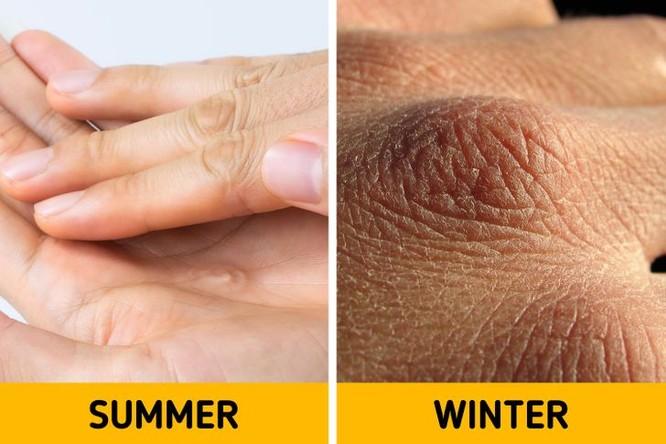 Cơ thể bạn sẽ thay đổi như thế nào vào mùa đông? ảnh 7