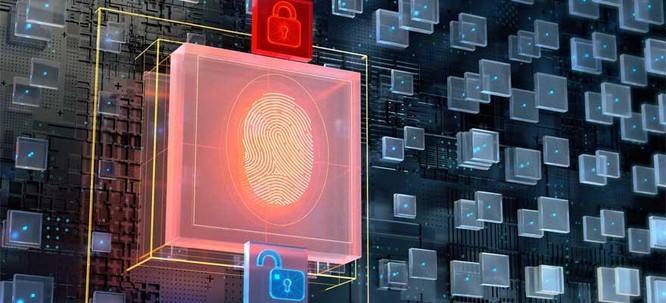 Các nền tảng giao dịch tiền điện tử đã quan tâm đúng mực đến dữ liệu cá nhân? ảnh 1