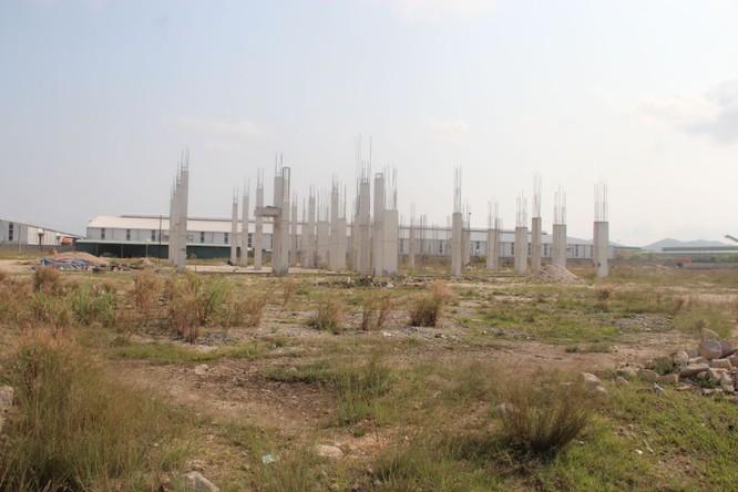 Dừng dự án của Doanh nghiệp đã được cấp phép là sai trái ảnh 1