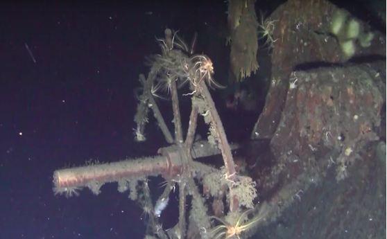 Công ty Hàn Quốc tuyên bố phát hiện tàu Nga đắm cách đây hơn 100 năm chở hơn 200 tấn vàng ảnh 1