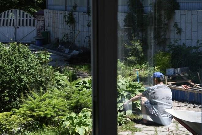Những người Triều Tiên - cộng đồng nhập cư hội nhập thành công nhất ở nước Nga hiện nay ảnh 2