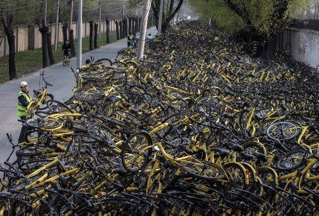 """Bài 1: Từ cuộc """"cách mạng"""" dịch vụ cho thuê xe đạp… ảnh 2"""