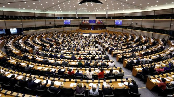 EU đang hướng tới cuộc bầu cử định mệnh ảnh 1