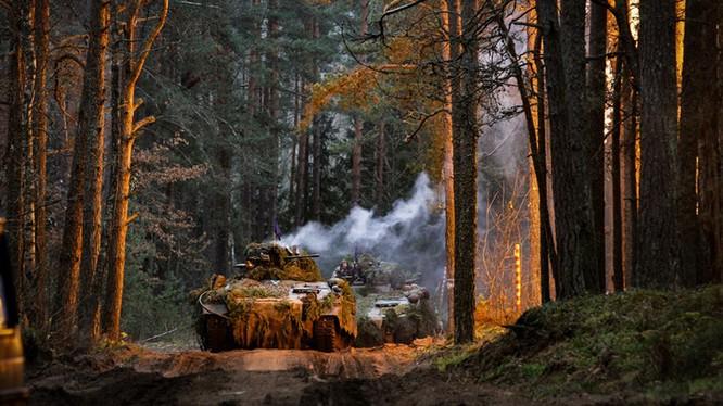 Tập trận BALTOPS 2019: NATO tiếp tục đe dọa Nga ở biển Baltic ảnh 2