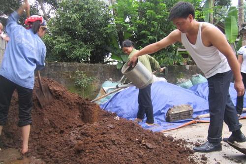 Cựu lính Trường Sơn làm cho nông dân giàu bằng... nấm ảnh 4