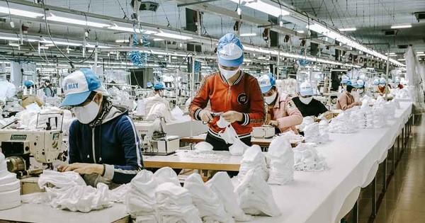 Việt Nam đang bỏ lỡ cơ hội tham gia chuỗi cung ứng toàn cầu sản phẩm bảo hộ y tế ảnh 1