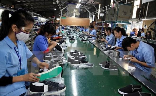 Da giày Việt Nam: mục tiêu xuất khẩu 24 tỷ USD của năm 2020 bên bờ vực phá sản ảnh 2