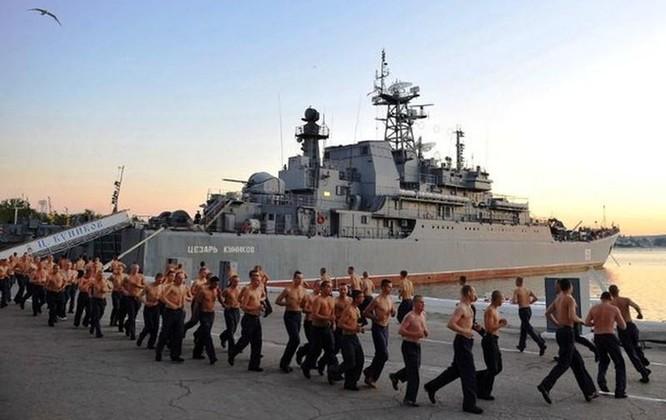 Tương quan sức mạnh Hạm đội Biển Đen của Nga và Hạm đội 6 của Mỹ ảnh 1