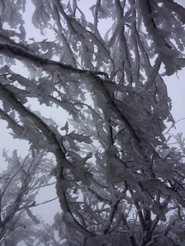 Mẫu Sơn rét âm 2 độ C, băng giá tràn ngập ảnh 1