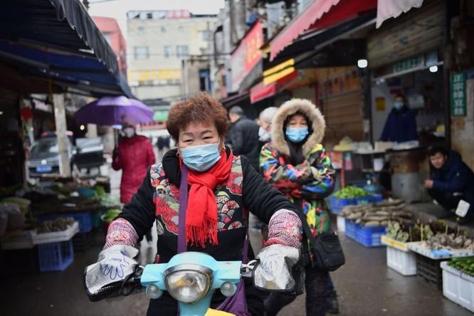 Lo ngại dịch do virus Corona, Trung Quốc cấm mua bán động vật hoang dã ảnh 1
