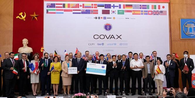 Phó Thủ tướng: Việt Nam đạt được bước tiến quan trọng khi tiếp cận nguồn vaccine phòng COVID-19 ảnh 1