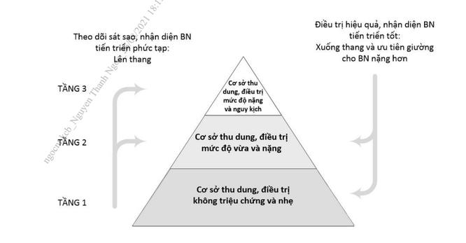 Mô hình điều trị COVID-19 mới của Bộ Y tế theo tháp 3 tầng có gì đặc biệt? ảnh 1