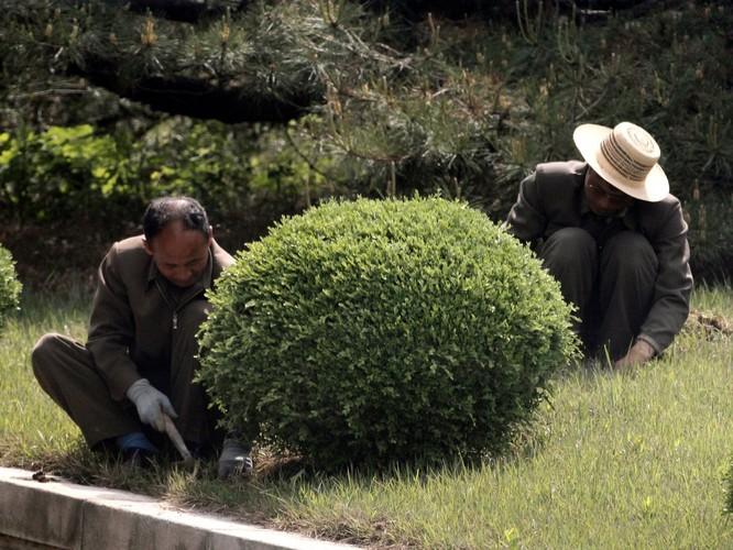 Cận cảnh Bàn Môn Điếm - Nơi mặt đối mặt giữa hai miền Triều Tiên ảnh 8