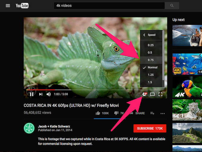 Các mẹo sử dụng Youtube có thể bạn chưa biết ảnh 5