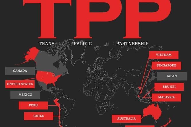 Nga phản ứng gì về hiệp định TPP có Việt Nam tham gia? ảnh 1