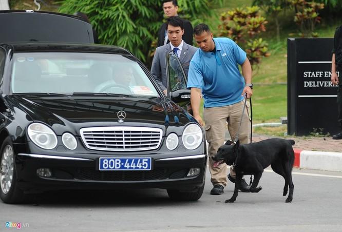 Đội chó nghiệp vụ K9 cũng được triển khai đến khách sạn, sân bay Nội Bài và nhiều địa điểm khác để kiểm tra mọi chiếc xe ra vào nơi tổng thống Mỹ đang lưu trú. Hầu hết chúng là chó dòng bergie Đức, được huấn luyện kỹ càng để dò tìm các mối đe dọa như bom, mìn...