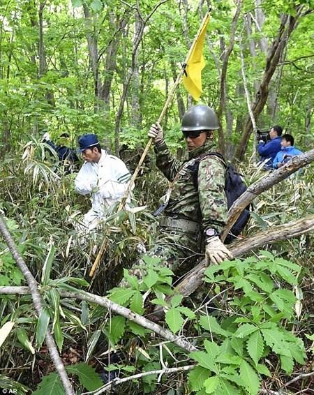 Gần 200 người đã tìm kiếm suốt 6 ngày trong khu rừng hẻo lánh.