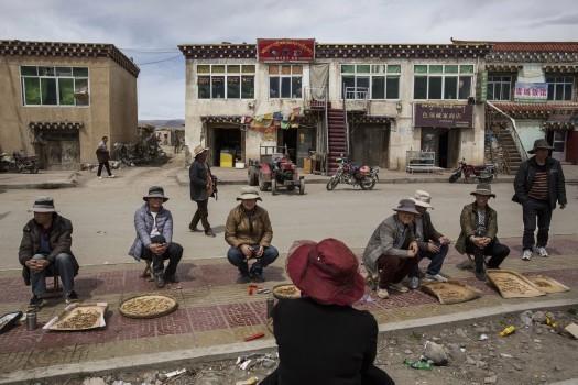 Sau quá trình tìm kiếm vất vả, người dân Tây Tạng sẽ đem những gốc đông trùng hạ thảo ra chợ bán.