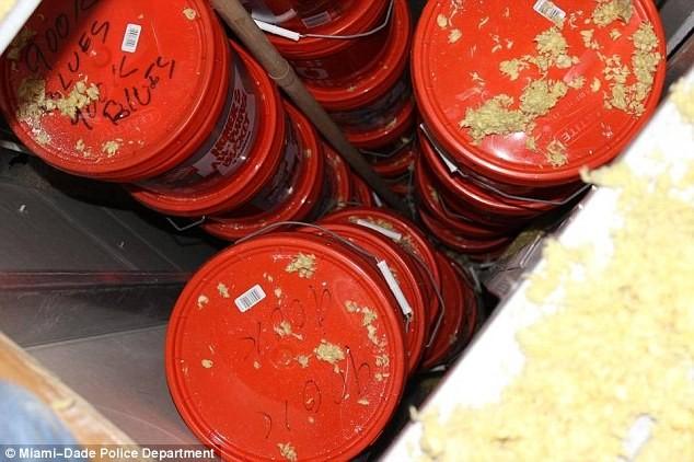 Mỹ bắt cặp đôi anh em buôn ma túy cất giấu 24 triệu USD trong các thùng nhựa ảnh 4