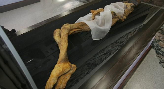 Phát hiện mới từ trong xác ướp Công chúa Altai ảnh 2