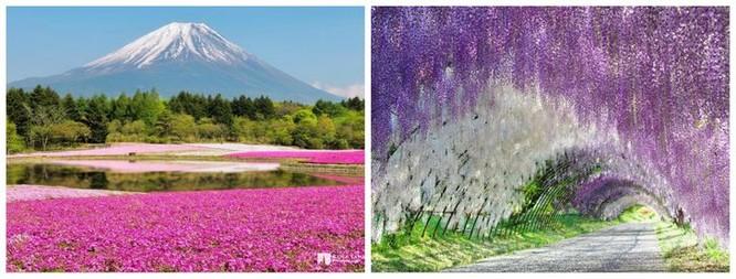 Check in tại 20 địa điểm đẹp lạ thường này để có hành trình đặc biệt thú vị ảnh 2