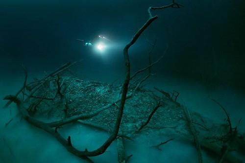 Phát hiện dòng sông nằm trong lòng đại dương mang nhiều giá trị ảnh 1