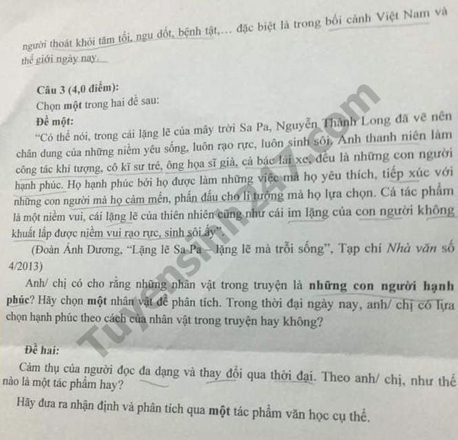 Tra cứu online đáp án đề thi tuyển sinh vào lớp 10 môn Văn của TP.HCM ảnh 2