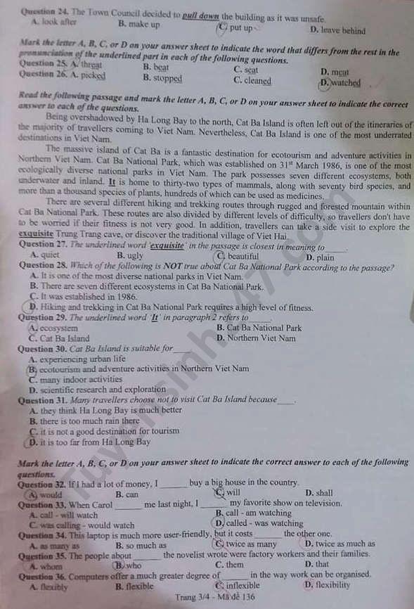 Tra cứu online đáp án đề thi tuyển sinh vào lớp 10 môn Tiếng Anh tỉnh Bắc Ninh năm 2020 ảnh 3