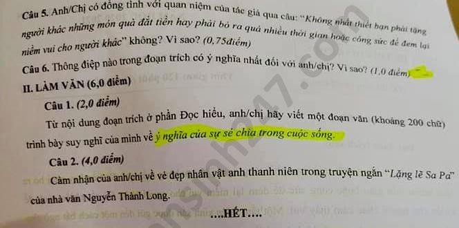 Tra cứu online đáp án đề thi tuyển sinh vào lớp 10 môn Ngữ Văn tỉnh Cà Mau năm 2020 ảnh 2