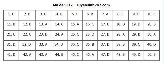 Tra cứu online đáp án đề thi THPT môn Toán 2020 mã đề 112 ảnh 2
