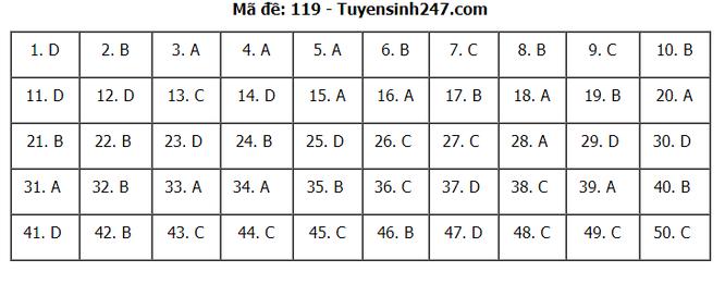 Tra cứu online đáp án đề thi THPT môn Toán 2020 mã đề 119 ảnh 2