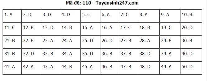 Tra cứu online đáp án đề thi THPT môn Toán 2020 mã đề 110 ảnh 7