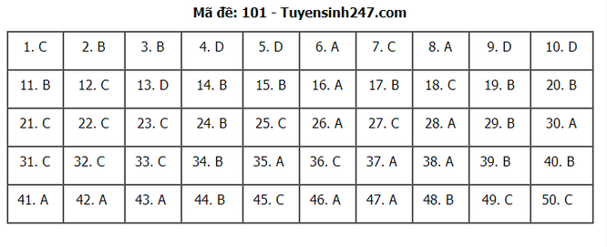 Tra cứu online đáp án đề thi THPT môn Toán 2020 mã đề 101 ảnh 7