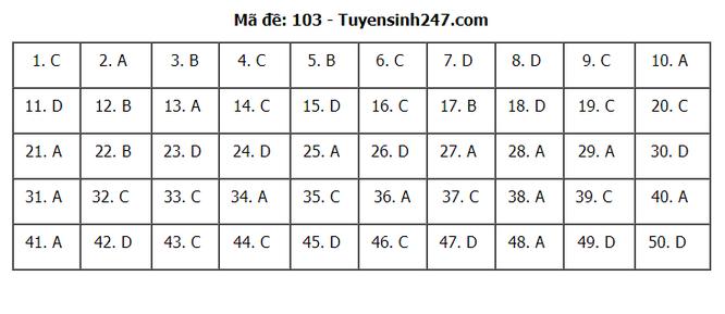 Tra cứu online đáp án đề thi THPT môn Toán 2020 mã đề 103 ảnh 7