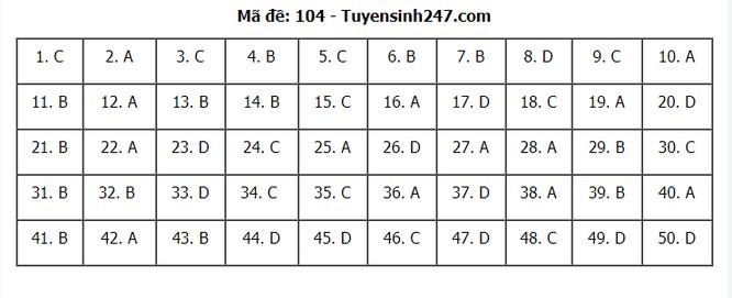 Tra cứu online đáp án đề thi THPT môn Toán 2020 mã đề 104 ảnh 7