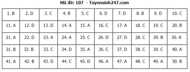 Tra cứu online đáp án đề thi THPT môn Toán 2020 mã đề 107 ảnh 7