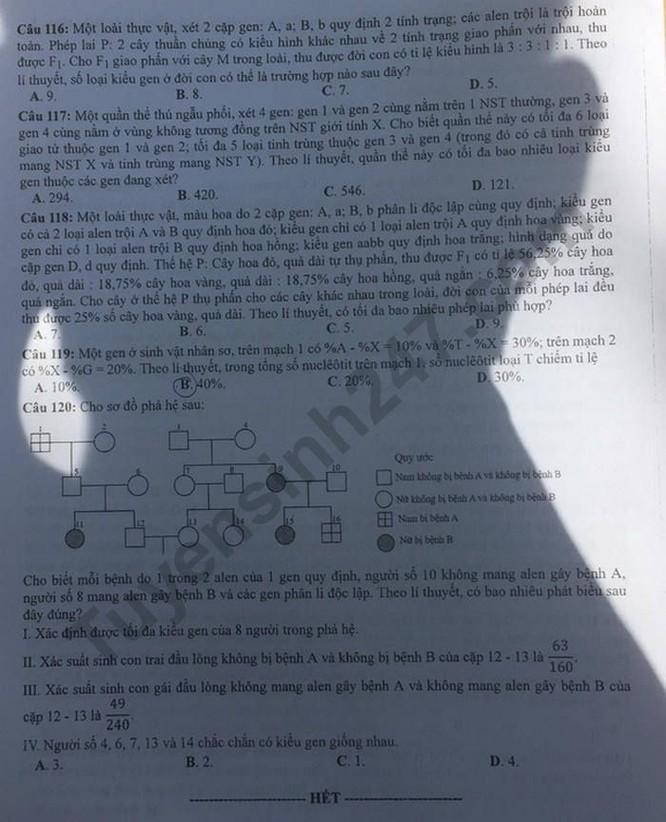 Tra cứu online đáp án đề thi THPT môn Sinh Học 2020 mã đề 218 ảnh 4