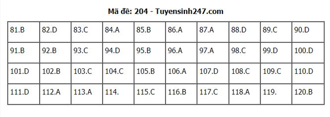 Tra cứu online đáp án đề thi THPT môn Sinh Học 2020 mã đề 204 ảnh 1