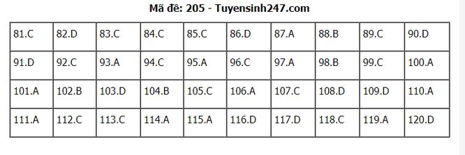Tra cứu online đáp án đề thi THPT môn Sinh Học 2020 mã đề 205 ảnh 1