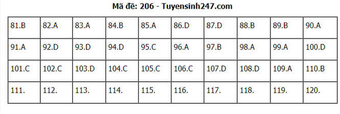 Tra cứu online đáp án đề thi THPT môn Sinh Học 2020 mã đề 206 ảnh 1
