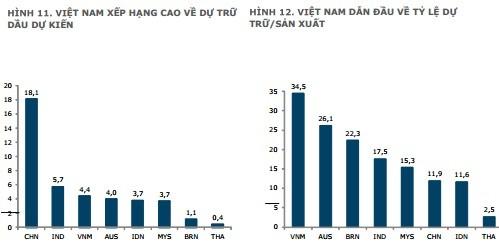 Việt Nam trữ dầu cho sản xuất cao nhất châu Á ảnh 1